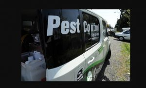 Pest Control Services In Craigieburn