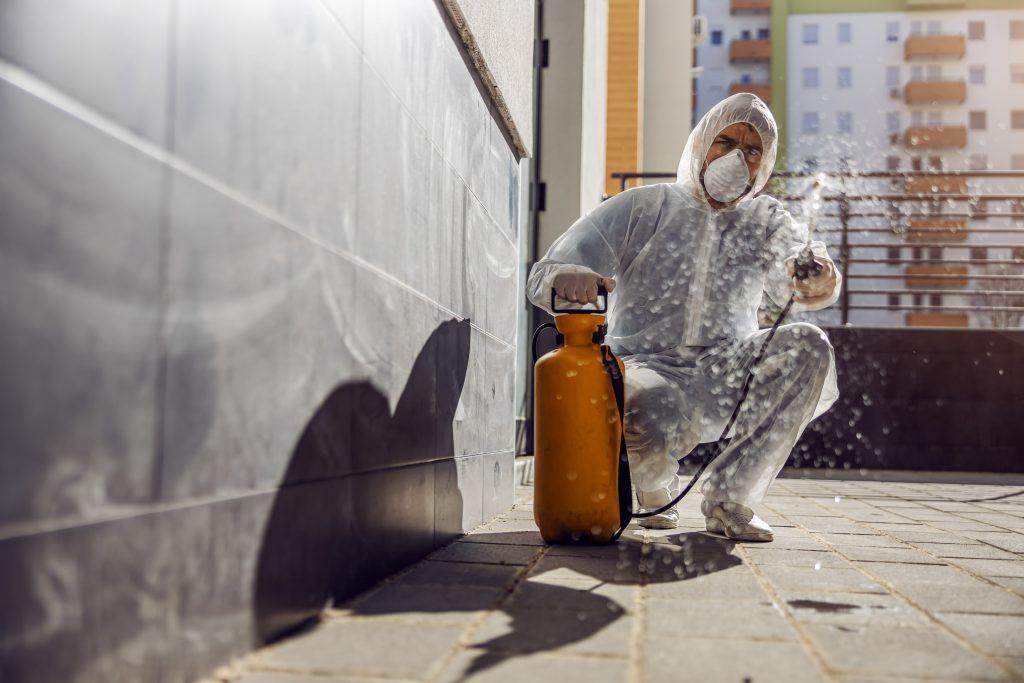 Pest Control Service Melbourne